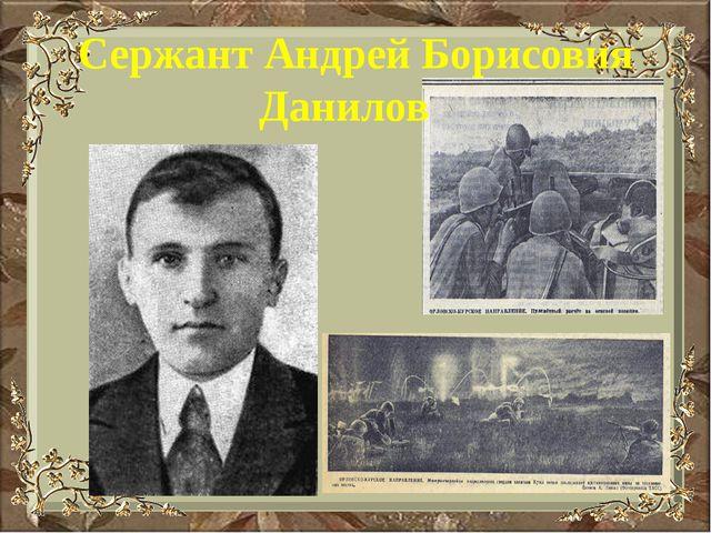 Сержант Андрей Борисовия Данилов