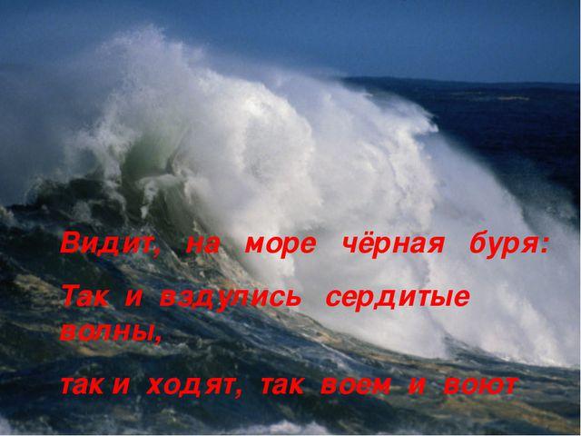 Видит, на море чёрная буря: Так и вздулись сердитые волны, так и ходят, так в...