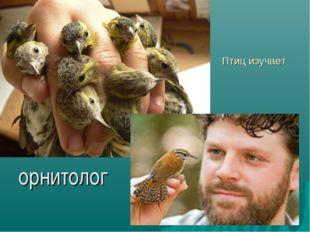 Птиц изучает орнитолог