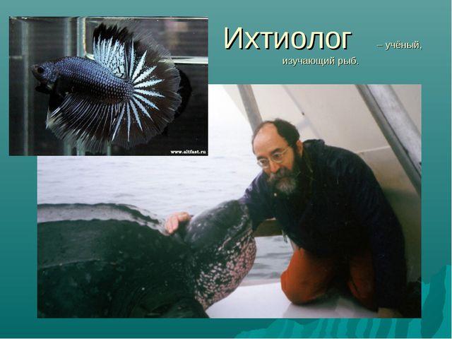 Ихтиолог – учёный, изучающий рыб.