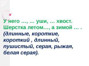 У него …, … уши, … хвост. Шерстка летом…, а зимой … . (длинные, короткие, кор