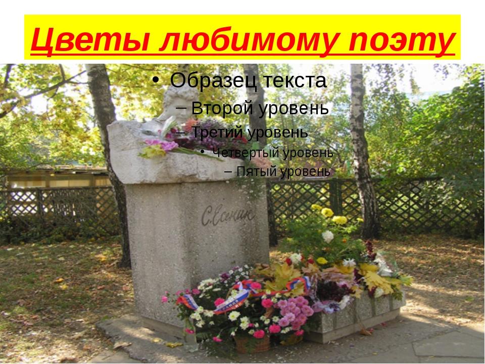 Цветы любимому поэту