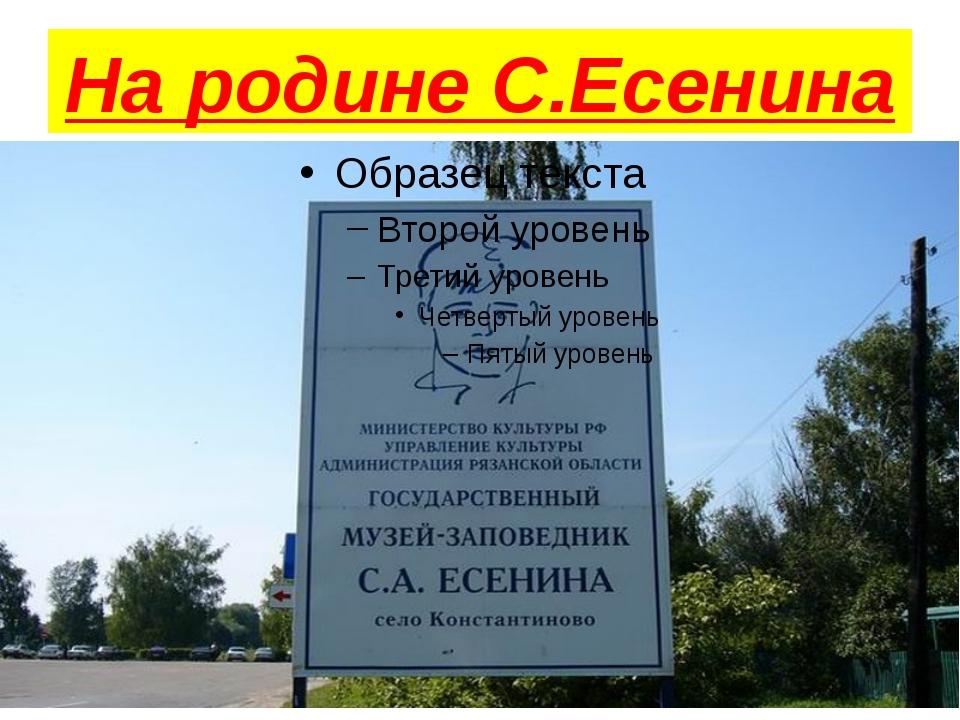 На родине С.Есенина