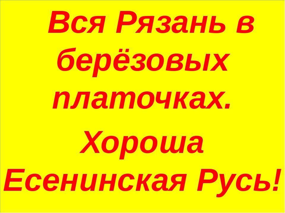 Вся Рязань в берёзовых платочках. Хороша Есенинская Русь!