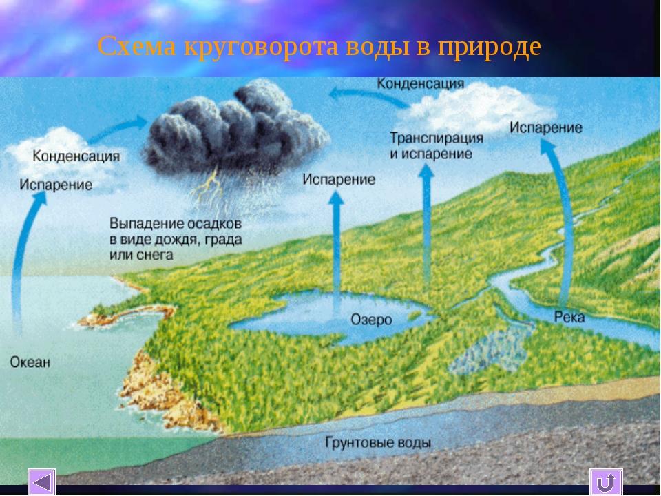 Схема круговорота воды в природе