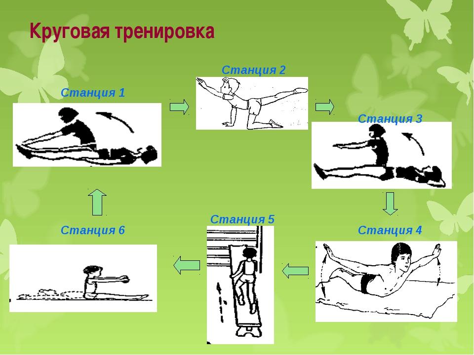 Круговая тренировка Станция 1 Станция 6 Станция 4 Станция 3 Станция 2 Станция 5