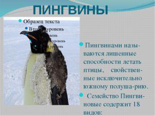 ПИНГВИНЫ Пингвинами назы-ваются лишенные способности летать птицы, свойствен-