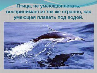 Птица, не умеющая летать, воспринимается так же странно, как умеющая плавать