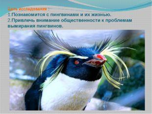 Цель исследования : 1.Познакомится с пингвинами и их жизнью. 2.Привлечь внима