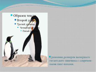 Сравнение размеров вымершего гигантского пингвина с современ-ными пинг-винами.