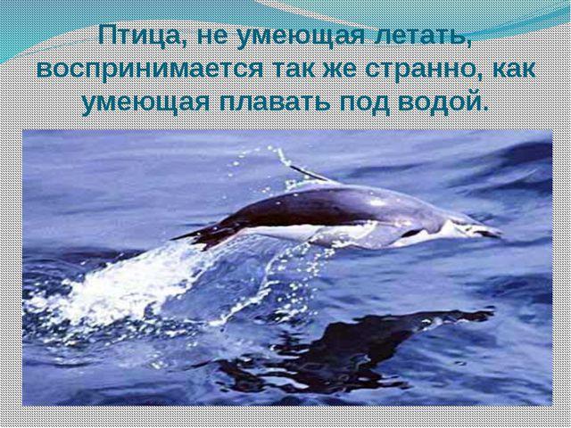 Птица, не умеющая летать, воспринимается так же странно, как умеющая плавать...