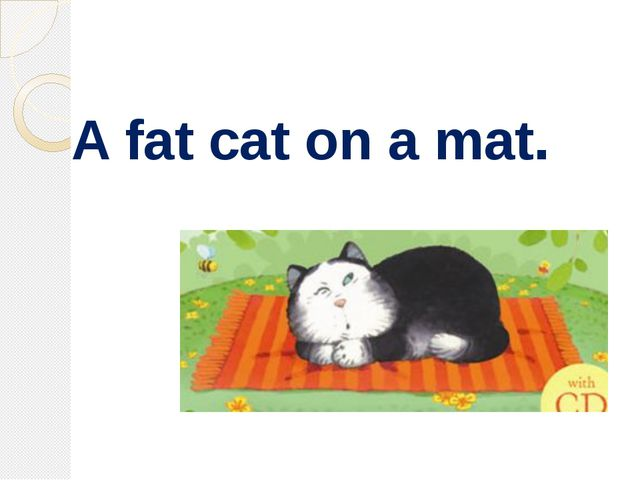 A fat cat on a mat.
