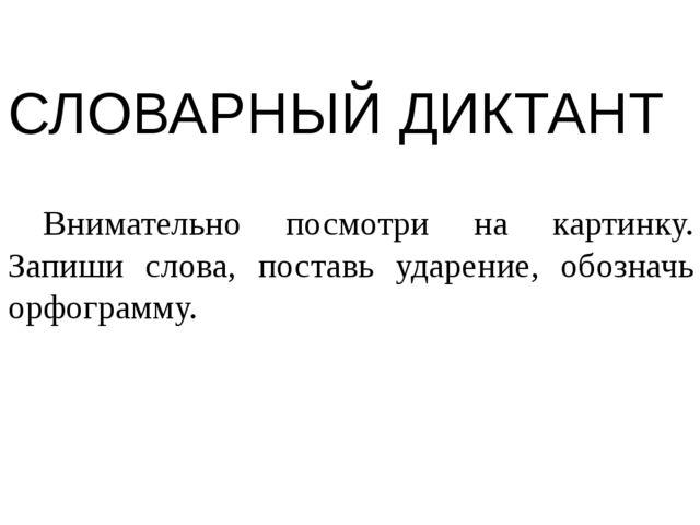 СЛОВАРНЫЙ ДИКТАНТ Внимательно посмотри на картинку. Запиши слова, поставь уд...