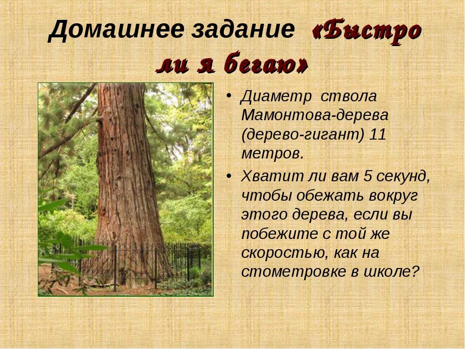 Домашнее задание «Быстро ли я бегаю» Диаметр ствола Мамонтова-дерева (дерево-...