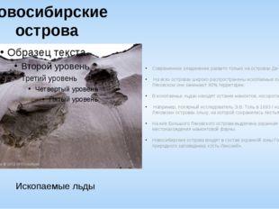 Новосибирские острова Современное оледенение развито только на островах Де-Ло