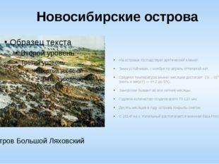 Новосибирские острова На островах господствует арктический климат. Зима устой