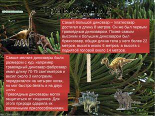 Самые мелкие динозавры были размером с кур, например травоядный динозавр фабр