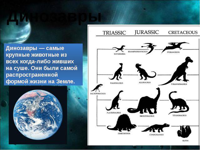 Динозавры Динозавры — самые крупные животные из всех когда-либо живших на суш...