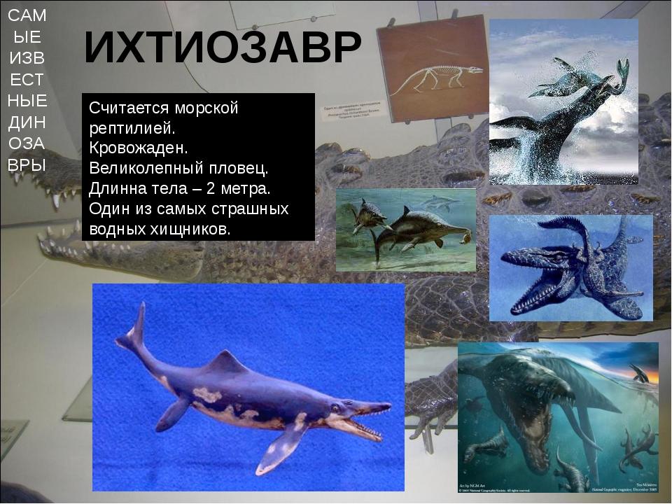 САМЫЕ ИЗВЕСТНЫЕ ДИНОЗАВРЫ ИХТИОЗАВР Считается морской рептилией. Кровожаден....