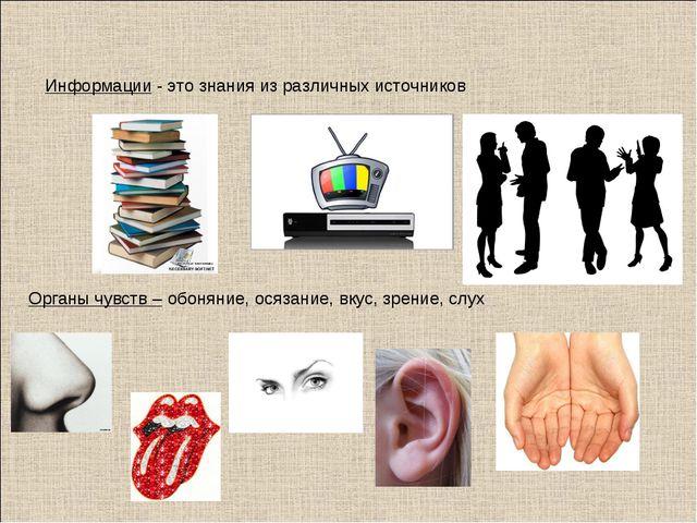 Органы чувств – обоняние, осязание, вкус, зрение, слух Информации - это знани...