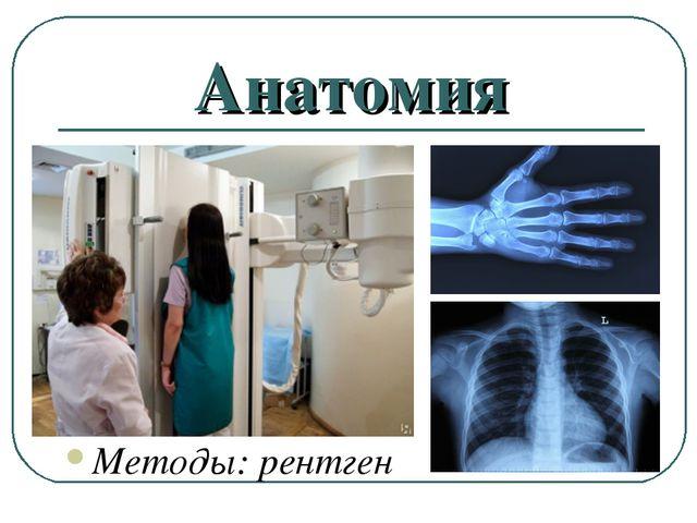 Анатомия Методы: рентген