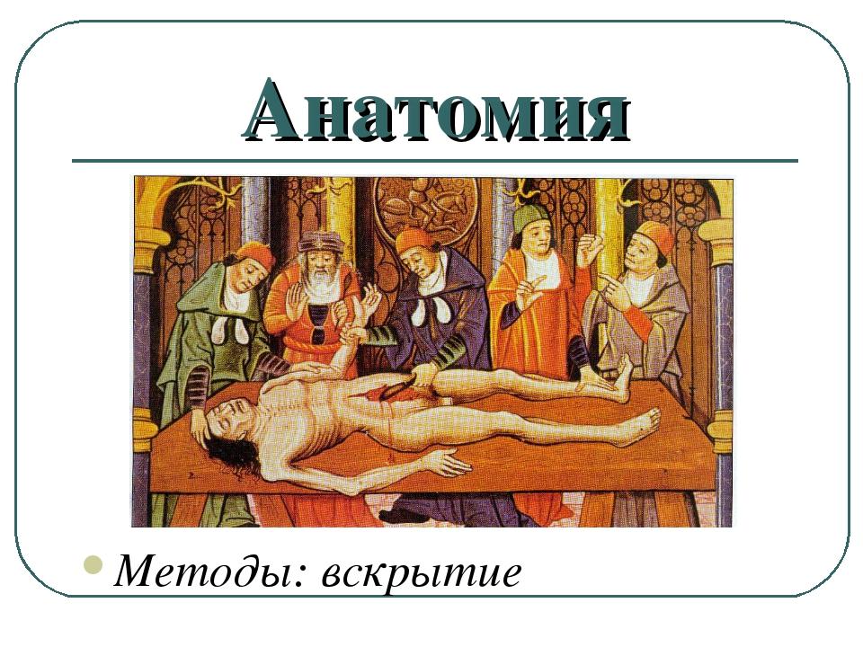 Анатомия Методы: вскрытие