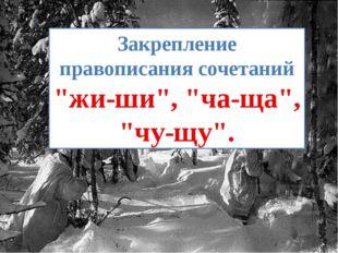 """Закрепление правописания сочетаний """"жи-ши"""", """"ча-ща"""", """"чу-щу""""."""