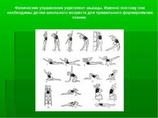 Физические упражнения укрепляют мышцы. Именно поэтому они необходимы детям шк