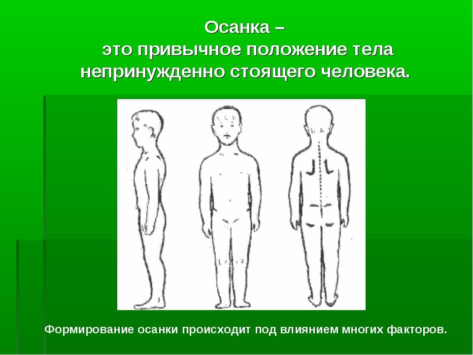 Осанка – это привычное положение тела непринужденно стоящего человека. Формир...