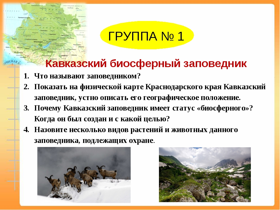 ГРУППА № 1 Кавказский биосферный заповедник Что называют заповедником? Показ...