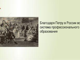 Благодаря Петру в России возникла система профессионального образования