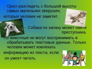 - Орел разглядеть с большой высоты самых маленьких зверушек, которых человек