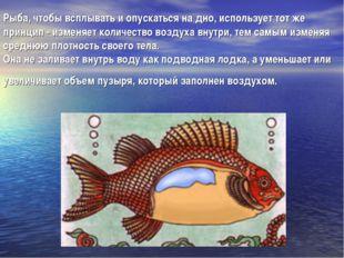 Рыба, чтобы всплывать и опускаться на дно, использует тот же принцип - изменя