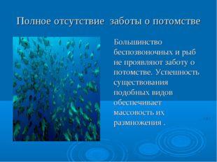 Полноеотсутствие заботыопотомстве Большинство беспозвоночных и рыб не про
