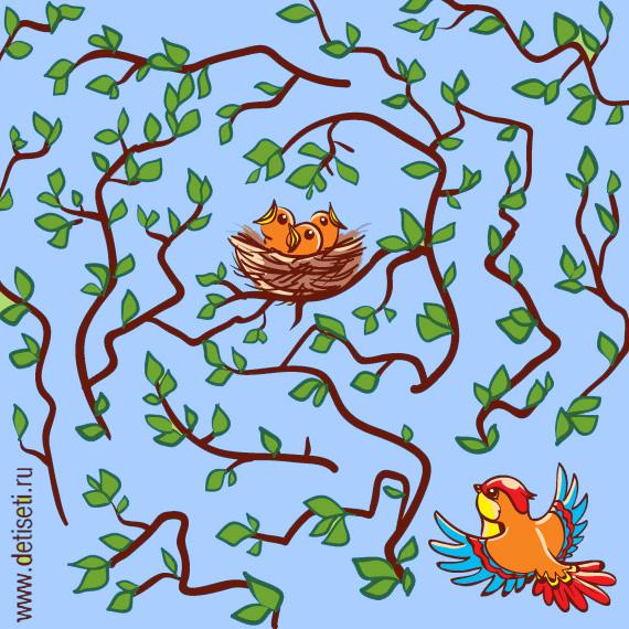 Птенчики в гнезде