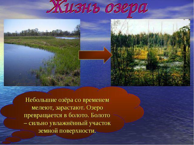 Небольшие озёра со временем мелеют, зарастают. Озеро превращается в болото. Б...