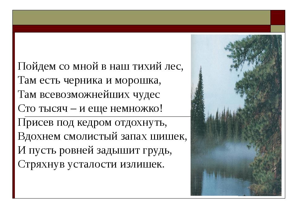 Пойдем со мной в наш тихий лес, Там есть черника и морошка, Там всевозможнейш...
