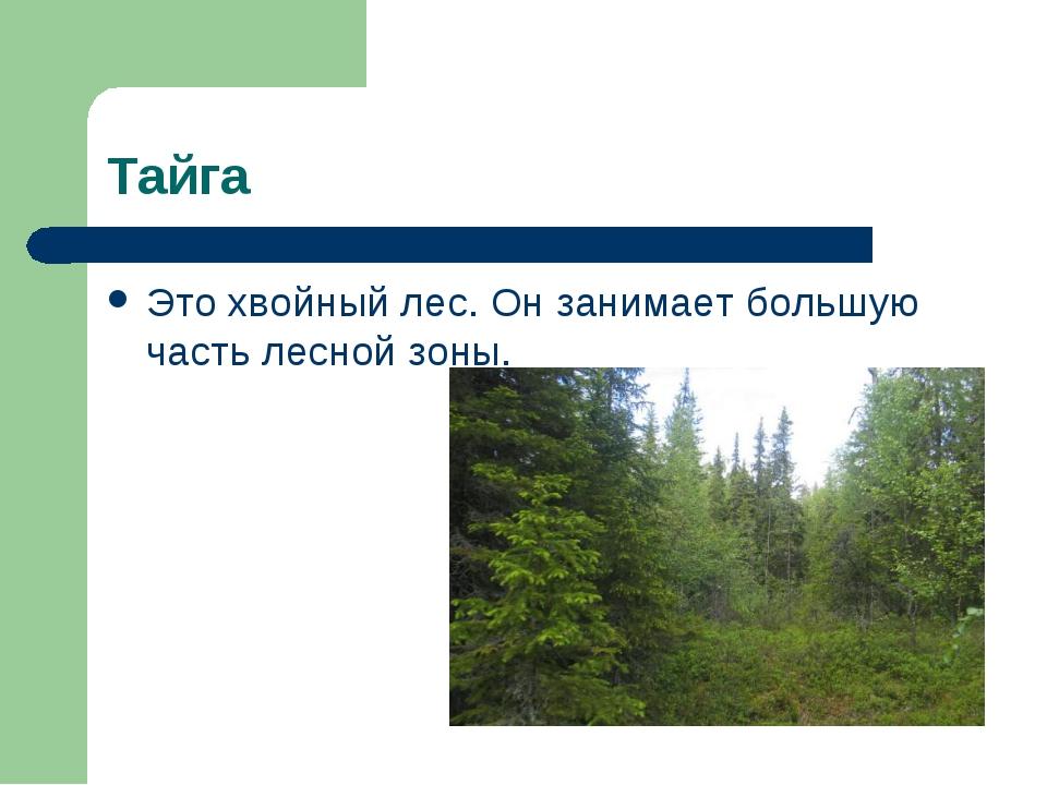 Тайга Это хвойный лес. Он занимает большую часть лесной зоны.