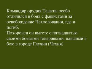 Командир орудия Ташкин особо отличился в боях с фашистами за освобождение Чех