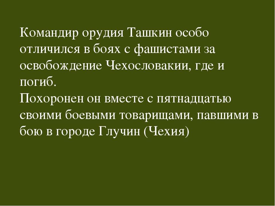 Командир орудия Ташкин особо отличился в боях с фашистами за освобождение Чех...