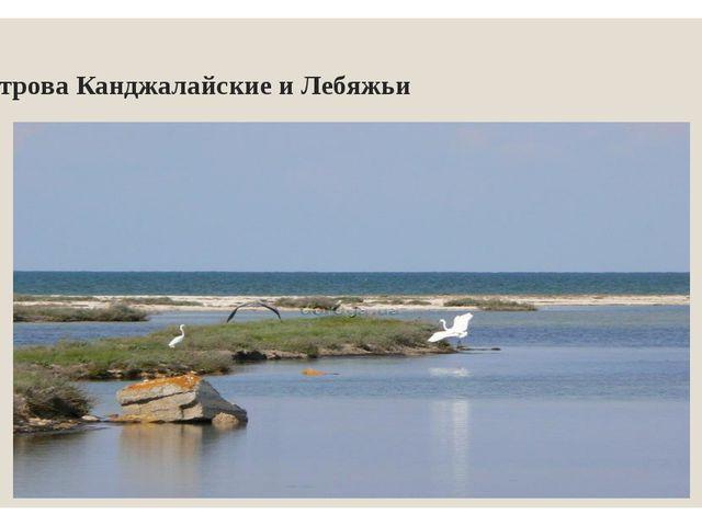 острова Канджалайские и Лебяжьи