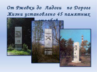От Ржевки до Ладоги по Дороге Жизни установлено 45 памятных столбов.
