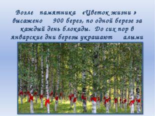 Возле памятника «Цветок жизни » высажено 900 берез, по одной березе за каждый