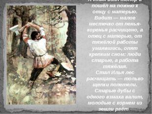 А Илья взял топор и пошёл на пожню к отцу с матерью. Видит — малое местечко о