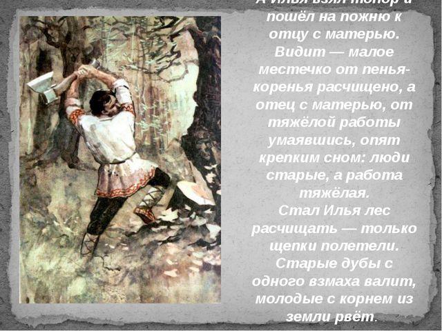 А Илья взял топор и пошёл на пожню к отцу с матерью. Видит — малое местечко о...