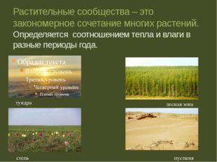 Растительные сообщества – это закономерное сочетание многих растений. Определ