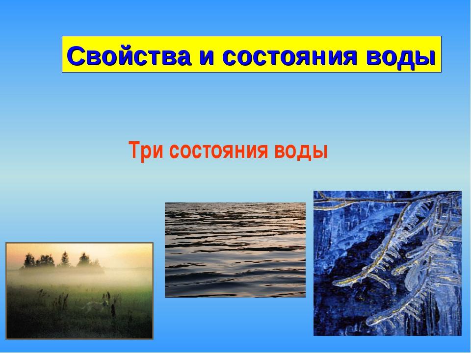 Три состояния воды Свойства и состояния воды