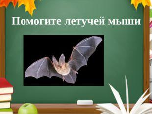 Помогите летучей мыши Читают правило и помогают мыши сделать правильный выбор