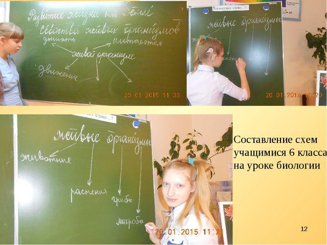 * Составление схем учащимися 6 класса на уроке биологии