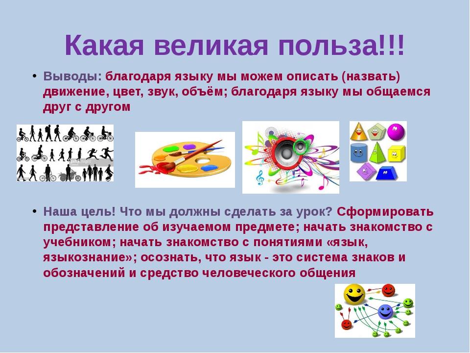 Какая великая польза!!! Выводы: благодаря языку мы можем описать (назвать) дв...